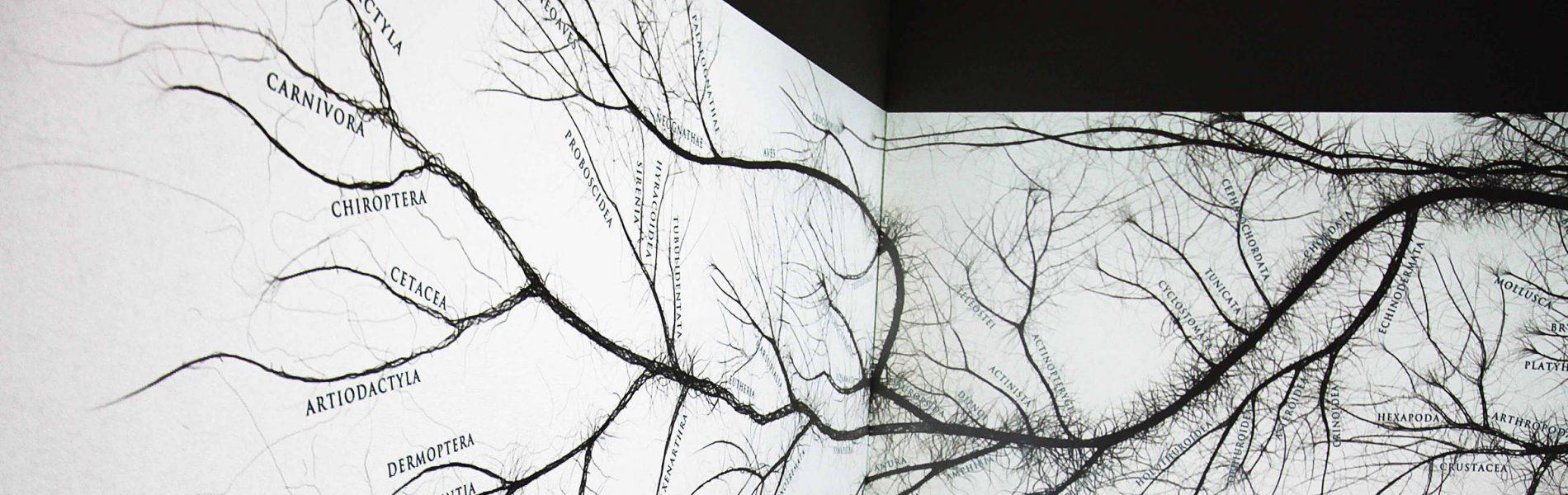 """Ein Foto der Installation """"Baum des Lebens"""" im Universum."""