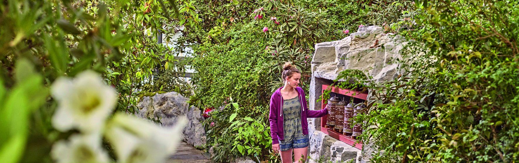 """Eine Frau läuft durch die """"botanika"""". Das Bild ist überwiegend mit grünen Pflanzen gefüllt."""