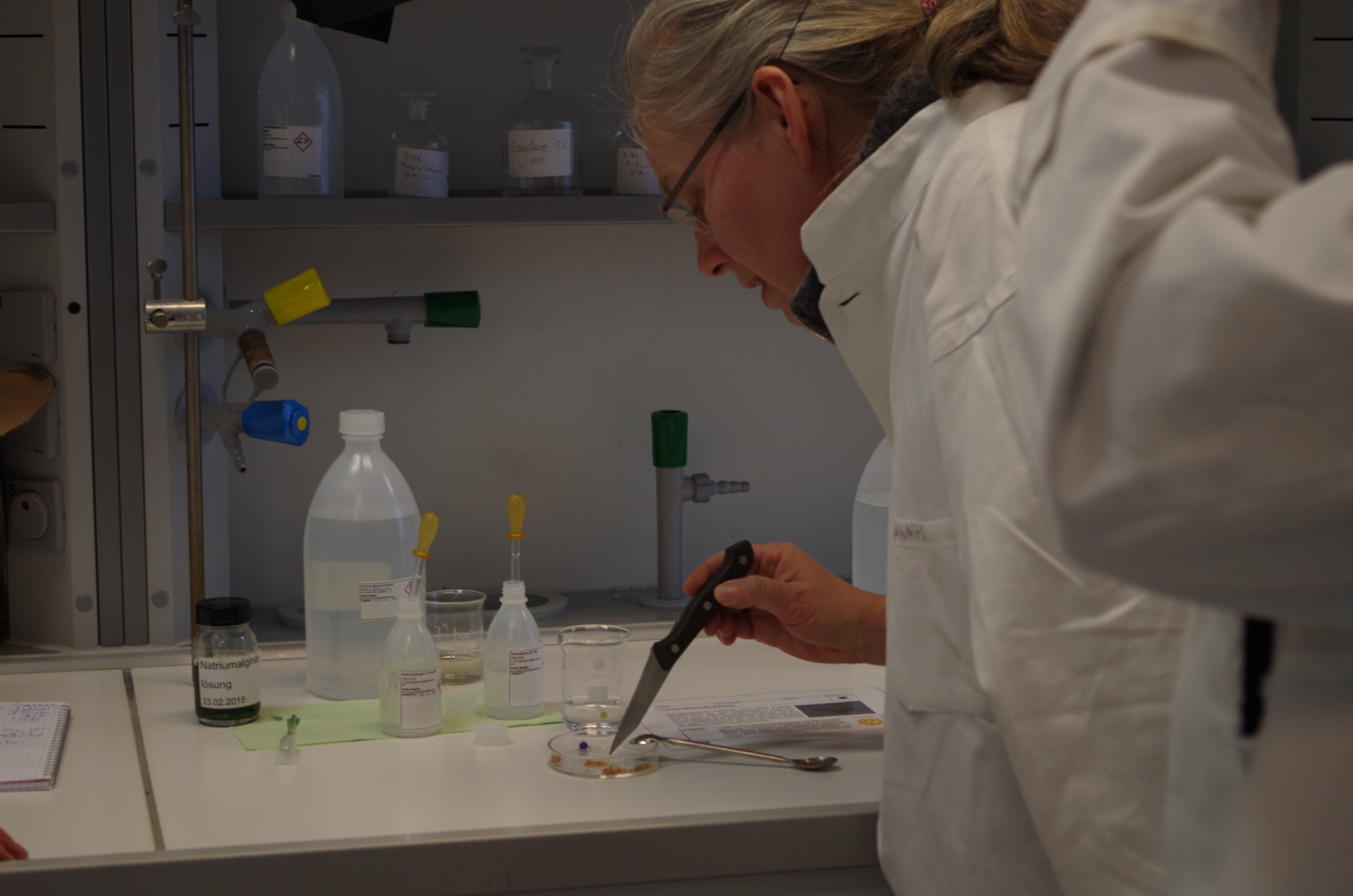 Eine Frau berührt mit einer Messerspitze den Inhalt eines Petriglases und trägt einen weißen Laborkittel dabei.